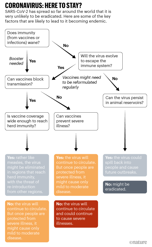 CORONAVIRUS: ĐÂY ĐỂ Ở ĐÂY. Hình ảnh hiển thị một số yếu tố chính có khả năng dẫn đến SARS-CoV-2 trở thành dịch bệnh đặc hữu.