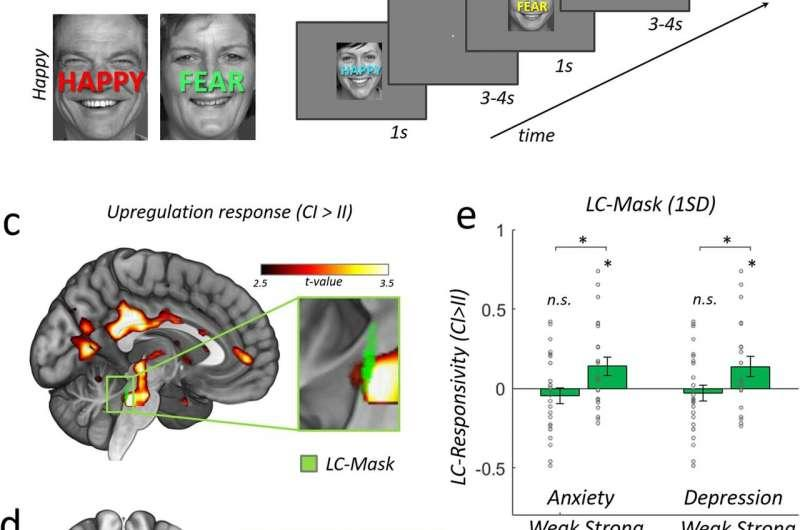 Researchers find new measure to predict stress resilience